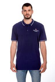 Чоловіча футболка поло, 60710, код 60710, арт 18801B