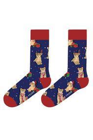 Шкарпетки, код 71884, арт WJFLSFUN-CH20