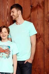 Зелені чоловічі футболки, 66420, код 66420, арт 6161-2